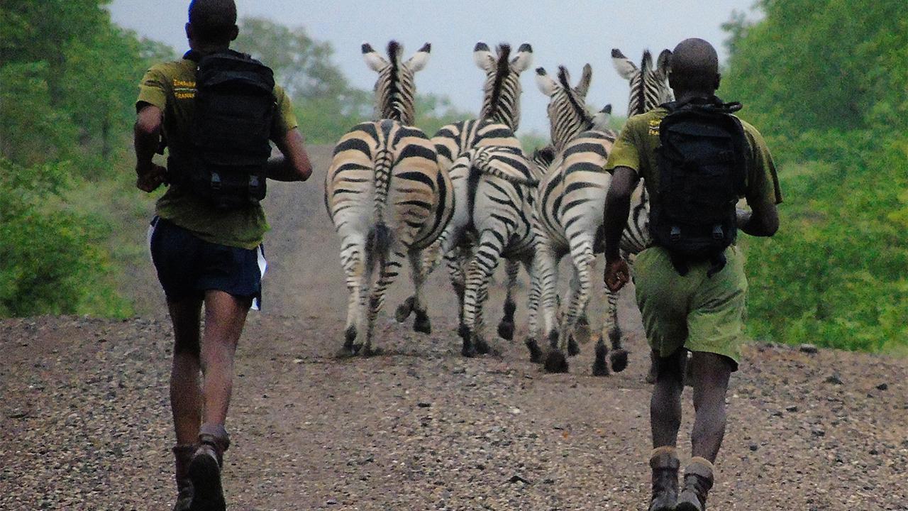 Save the Rhino London Marathon Support